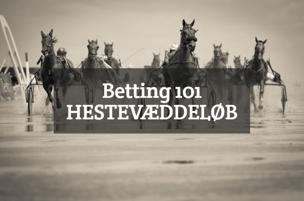 Betting 101 – Hestevæddeløb